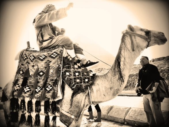 Camel, iPhoneography