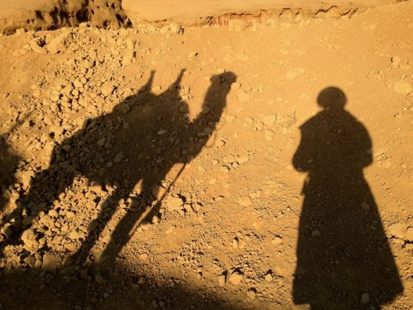 Self-portrait with camel, iPhoneography
