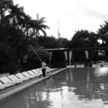 Pool at The Shore Club image for post