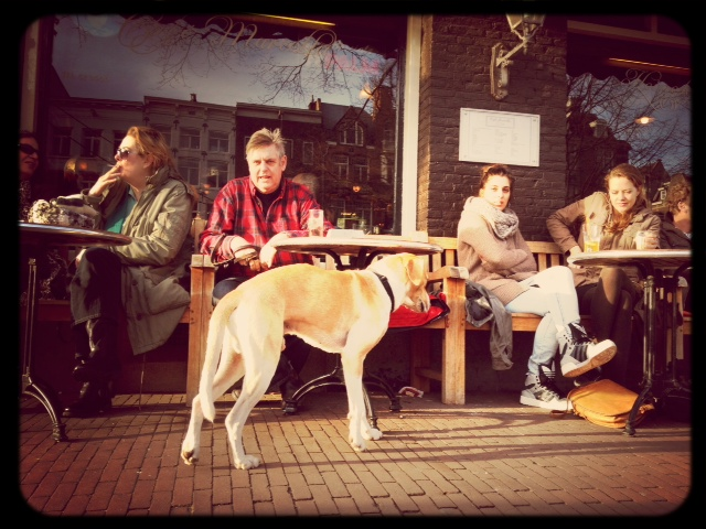 Cafe life in Amsterdam is a sure sign of Spring.
