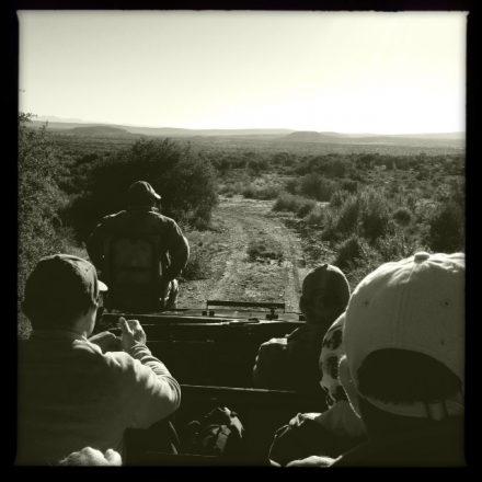 Aboard the Landcruiser. Hipstamatic safari!