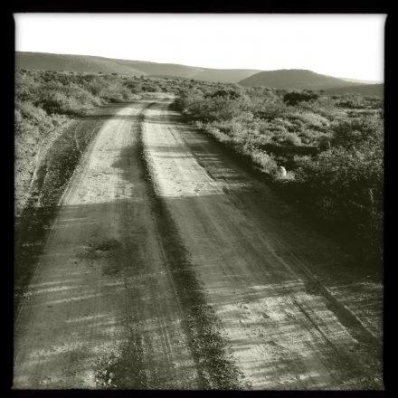Long & winding dirt road (Hipstamatic)
