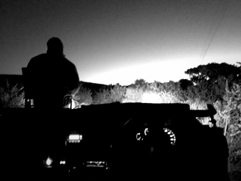 Night Ranger. I took this picture on a night game drive using my iPhone and the NightCap app