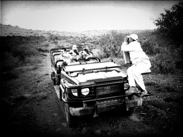 Safari vehicle picture