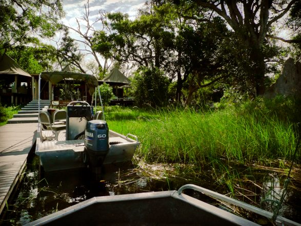 Xudum Botswana Okavango swamp