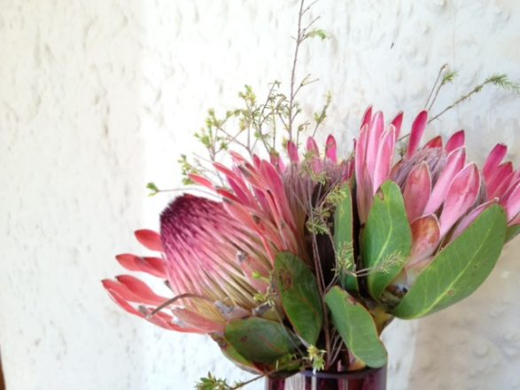 Exotic Flowers at the reception of Kwandwe (add hyperlink) in South Africa 1