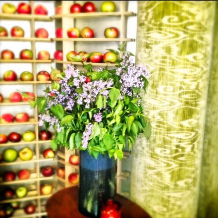 Flowers and apples line the heavenly scented entry to Bouley (add hyperlink) one of my favorite restaurants in NYC
