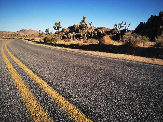 Desert road trip pit stop - Joshua Tree
