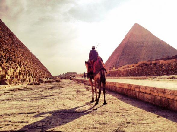 Camel between 2 pyramids