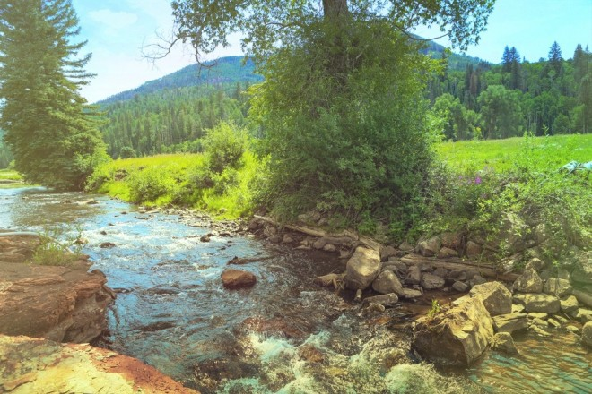 The west fork of the Dolores river may not be large, but it's beautiful