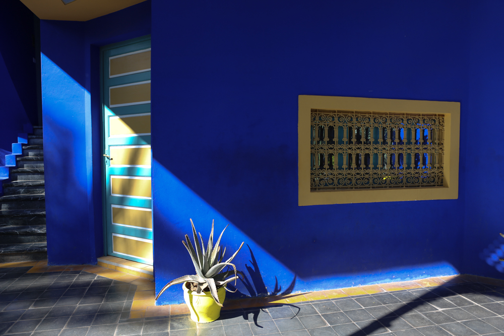 Marrakechs Jardin Majorelle A Photo Essay My Lifes A Trip