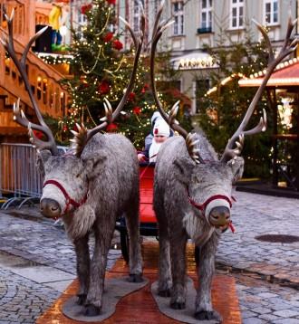 christmas_market-1814